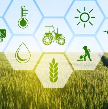 Agricoltura 4.0 | Fiscalità agevolata per il rilancio del «comparto primario» | Studio Ragazzo-Pescari Professionisti associati